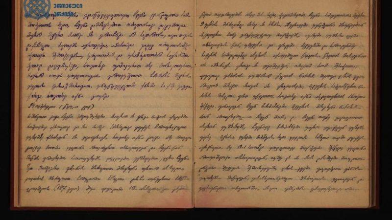 1921 წლის 24 თებერვლის ღამე. თბილისის მისადგომები. სანგარში მჯდომი 18 წლის მოხალისის მიერ საკუთარ დღიურში გაკეთებული ჩანაწერი: